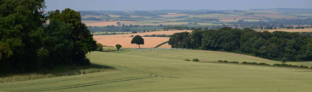 Picture of green rolling hills of Oxfordshire