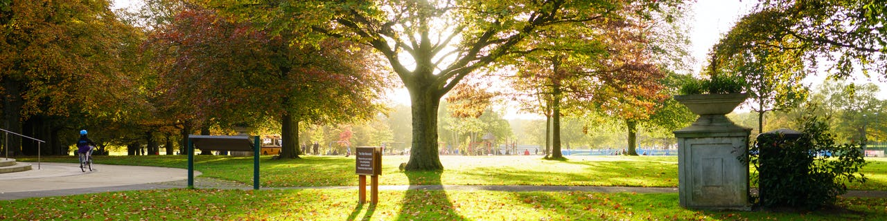 War Memorial Park Coventry in Autumn Sunny day Tree image and people are walking gand kids play in park